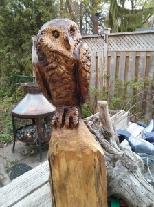 Chainsaw owl - 2nd view